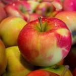 魔法の果実「りんご」で、美肌&アンチエイジング