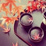 旬の味わいにあわせたい!秋におすすめの日本酒3種と旬のレシピ