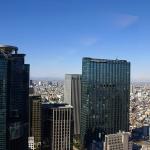 """山ガール""""ひろみこ""""が西新宿の高層ビルでうっかり婚活イベントに迷い込んだログ"""