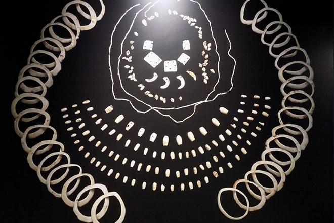 貝の装飾品