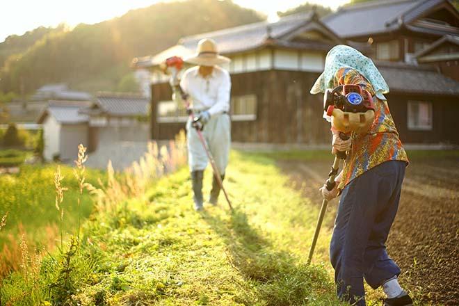 作業する農家の人たち